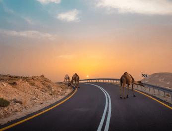 Die Neue Seidenstraße eröffnet neue Wege
