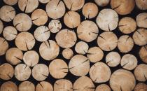 Holz wird Mangelware - Holzpackmittel-Branche schlägt Alarm